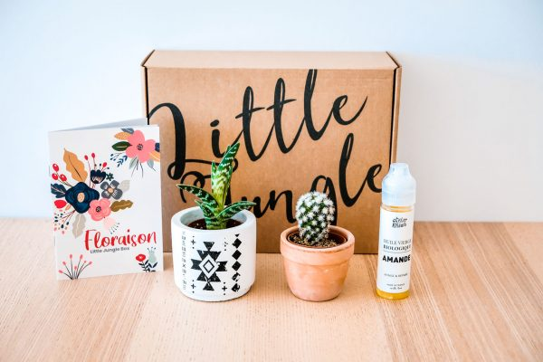 Little Jungle | Création de packaging par ALIOKI, agence de communication à Sarlat, Brive et Lyon
